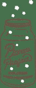 Pioneer Project Logo